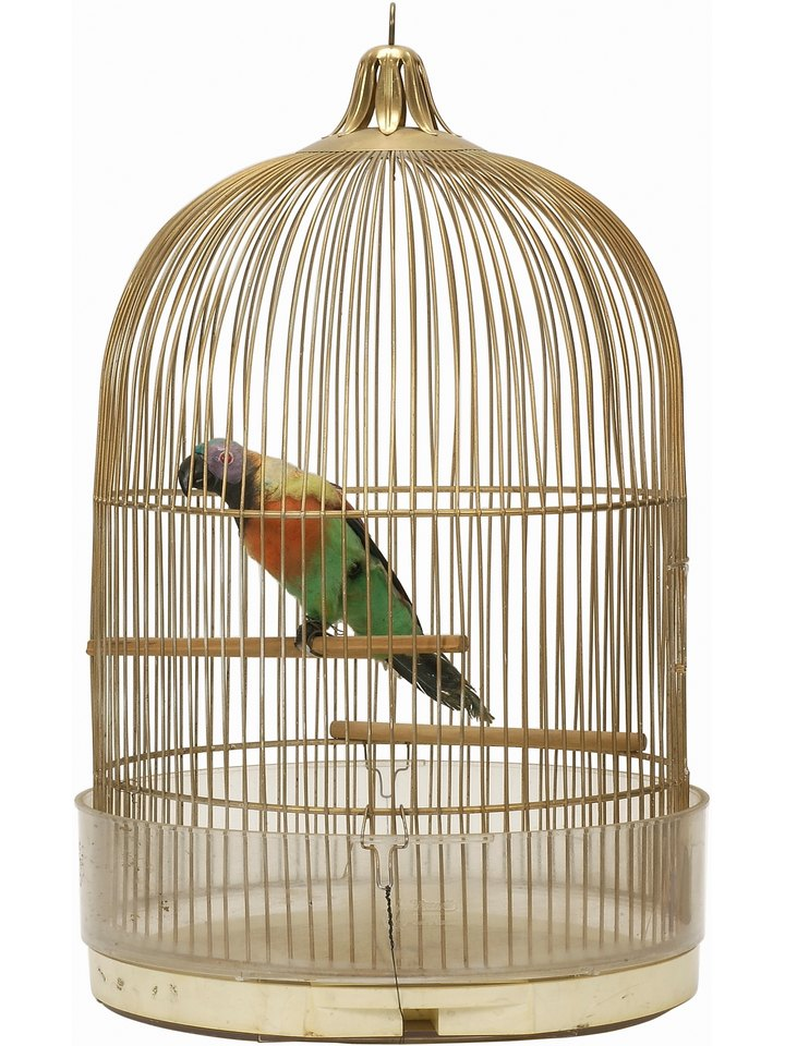 How to Make Cage Perches