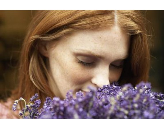 The Estrogenic Effects of Lavender Oil