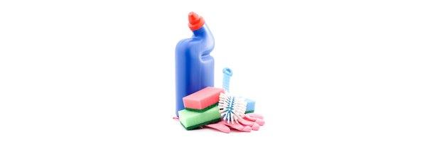 executive housekeeper job description pdf