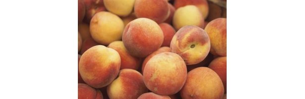 Related Pictures chane or fruit chaat recipe urdu indian pakistani ...