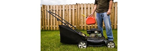 how to put in a new lawn
