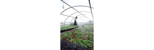 Intermittent Mist System : Misting systems of greenhouses ehow