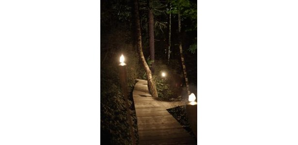 How to Make Outdoor Decorative Lighting to Hang From Trees thumbnail