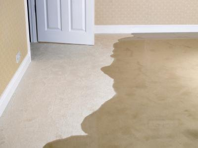 How to Clean Wet Carpets thumbnail