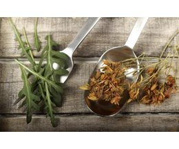 Herbs to Lower Female Testosterone Levels (with Pictures)   eHow