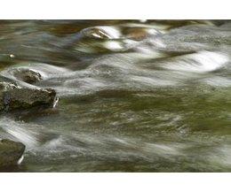 environmental law essay questions