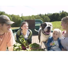 Fruits & Vegetables That Dogs Should Not Eatthumbnail