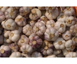 Does Raw Garlic Promote Hair Growth With Pictures Ehow
