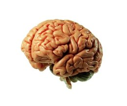 What vitamin deficiency causes brain fog picture 3