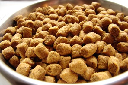FDA Pet Food Regulations