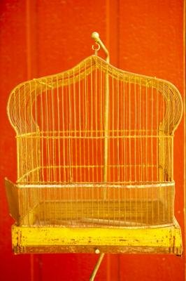 Hanging a Birdcage