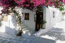 Nature is an important part of the Greek lifestyle and decor.