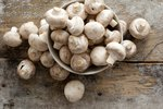 How to Know if Mushrooms Are Bad