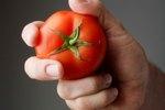 How to Strain Tomato Seeds