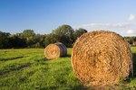 How to Make Mini Hay Bales