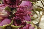 How to Preserve Flowers With Spray
