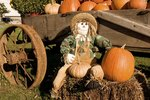 Fall Party Games for Adults