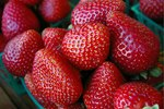 Tips on Cutting Strawberries for Fruit Trays