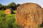 Why Do Farmers Wrap Their Hay?