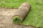 How to Plant a Lawn From Sod