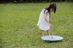 How to Use Revive Lawn Treatment