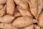 Sweet Potato Characteristics