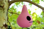 How to Make Gourd Birdhouses