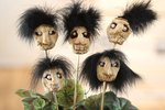 How to Make Dried Apple Shrunken Heads