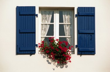 Window with shutters and flowers