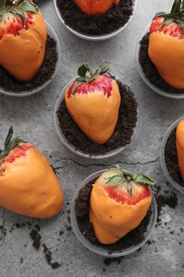 Carrot patch strawberries