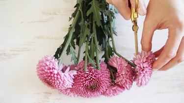 Cutting flowers off stems