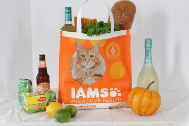 Grocery bag made from pet food bag