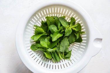 Fresh mint in a collander