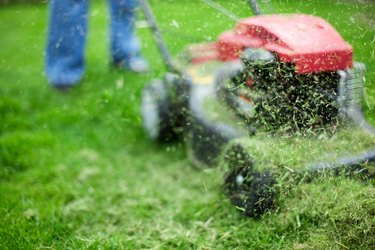 Grass clippings on lawn mower