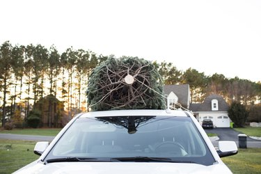 Christmas tree on SUV's rooftop against sky during sunset