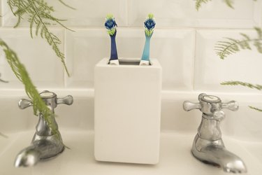 Tooth Brush Togetherness