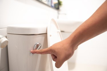 hand flush toilet