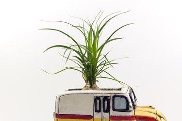Flowerpot shaped vehicle