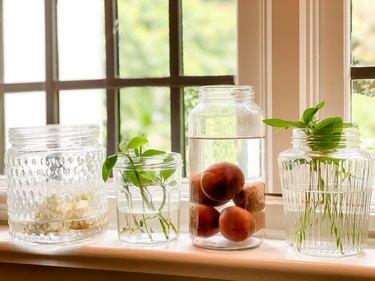 indoor window sill gardening