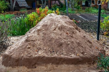 Large pile of sand in the vegetable garden