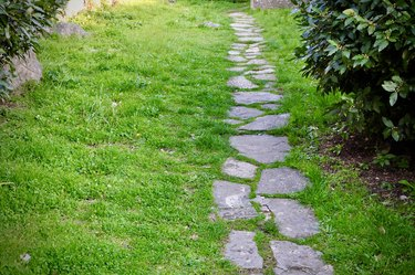 Stepping stone path in old garden