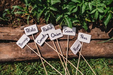 Plant labels and markers in vegetable garden, summer time.