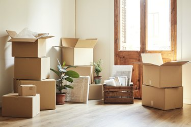 Moving boxes and potted plants