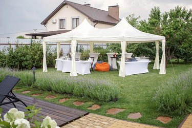 Backyard barbeque party at summer, elegant decoration, luxury catering, tasty and beautiful food