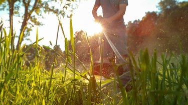 LOW ANGLE: Unrecognizable male gardener mows the lawn with a handheld lawnmower.