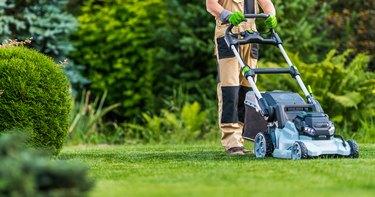 Gardener Trimming Grass Lawn Using Electric Cordless Mower