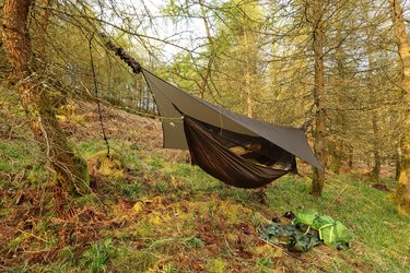 Hammock on a hillside in the forest, English Lake District