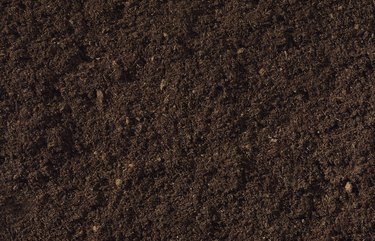 Compost Background