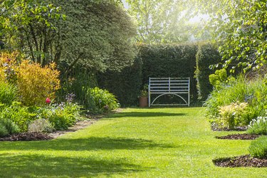A rusty wrought iron white bench on the grass in a summer, sunny English Garden