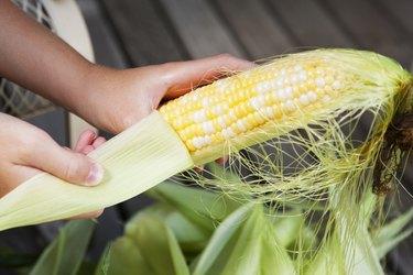 Hand Shucking Corn on the Cob